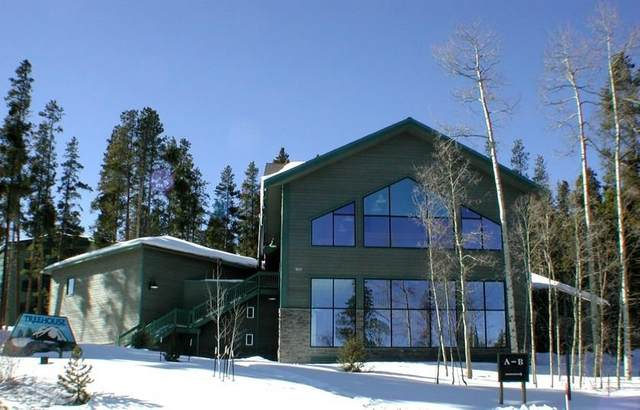 4400 Lodge Pole Circle #103, Silverthorne, CO 80498 (MLS #S1017898) :: Colorado Real Estate Summit County, LLC