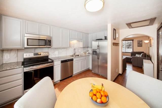 489 W 4th Street W D, Silverthorne, CO 80498 (MLS #S1017958) :: Colorado Real Estate Summit County, LLC
