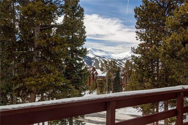 1233 Baldy Road, Breckenridge, CO 80424 (MLS #S1017993) :: Colorado Real Estate Summit County, LLC
