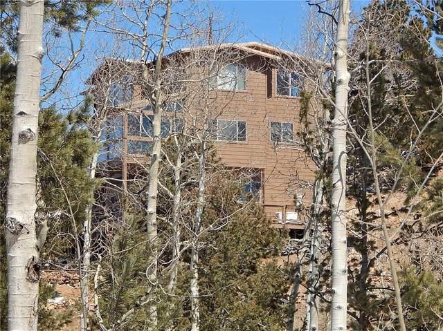 183 Raven Way, Como, CO 80432 (MLS #S1017999) :: Colorado Real Estate Summit County, LLC