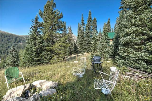 321 Monte Cristo Mine Road, Breckenridge, CO 80424 (MLS #S1018019) :: Dwell Summit Real Estate