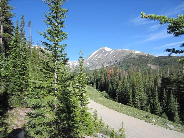 235 Scr 805, Breckenridge, CO 80424 (MLS #S1018020) :: Dwell Summit Real Estate