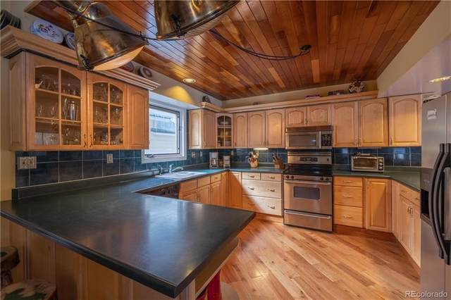 860 Hinsdale County Rd 142 #39, Other, CO 81235 (MLS #S1018026) :: Colorado Real Estate Summit County, LLC