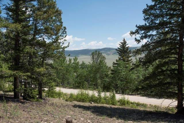 Lot 498 Redhill Road, Fairplay, CO 80440 (MLS #S1018036) :: Colorado Real Estate Summit County, LLC