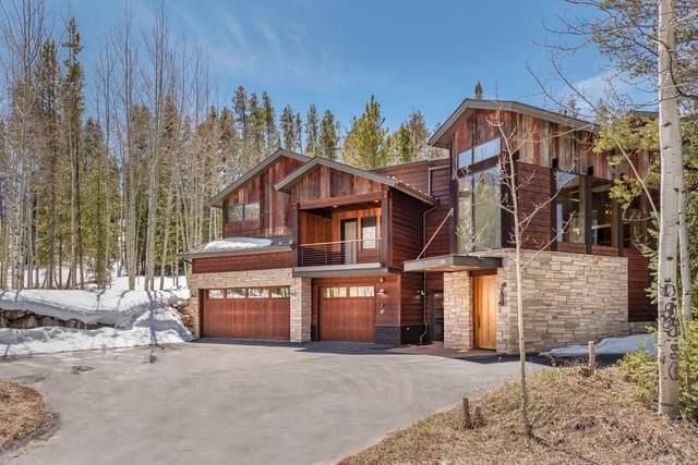 255 Arnica Lane, Silverthorne, CO 80498 (MLS #S1018209) :: Colorado Real Estate Summit County, LLC