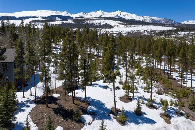 643 Highfield Trail, Breckenridge, CO 80424 (MLS #S1018230) :: Dwell Summit Real Estate