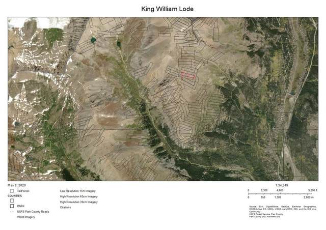 0 Not Applicable, Alma, CO 80420 (MLS #S1018305) :: Colorado Real Estate Summit County, LLC