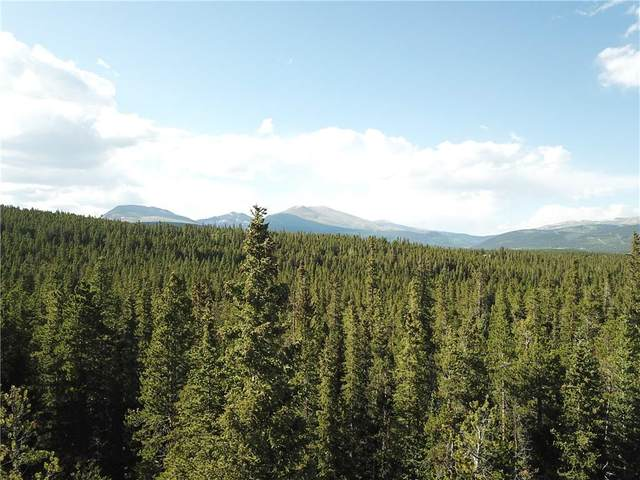 635 Vots Drive, Fairplay, CO 80440 (MLS #S1018476) :: Colorado Real Estate Summit County, LLC
