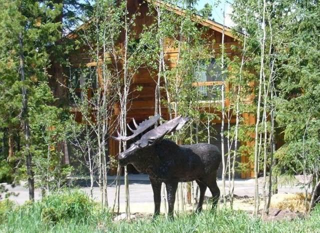 206 Morning Star Drive, Breckenridge, CO 80424 (MLS #S1018525) :: Dwell Summit Real Estate