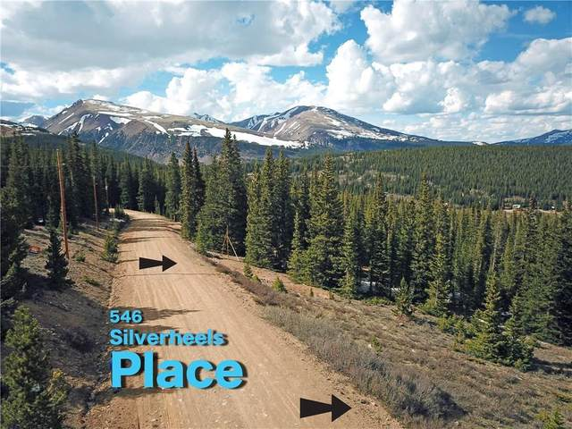 546 Silverheels Place, Fairplay, CO 80440 (MLS #S1018575) :: Colorado Real Estate Summit County, LLC