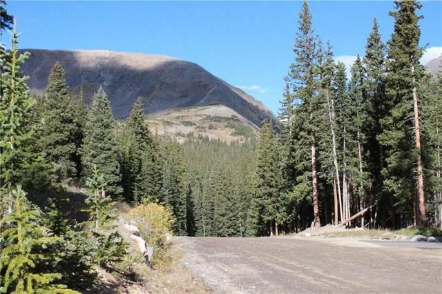 681 Kimmes Lane, Breckenridge, CO 80424 (MLS #S1018595) :: Colorado Real Estate Summit County, LLC