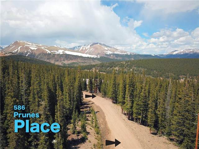 586 Prunes Pl, Fairplay, CO 80440 (MLS #S1018598) :: Colorado Real Estate Summit County, LLC