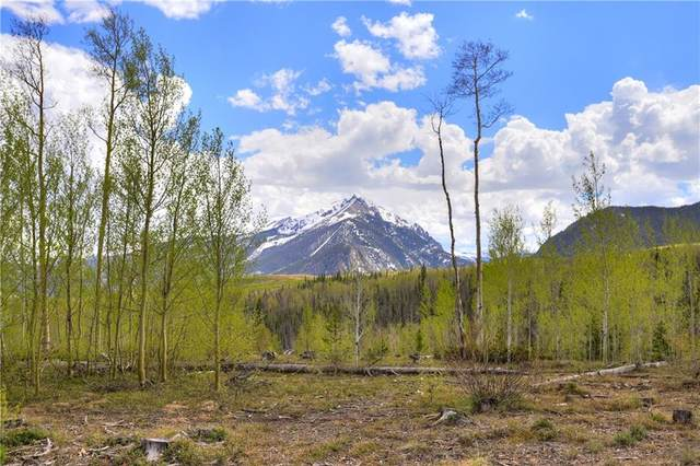60C Black Diamond Trail 60-C, Silverthorne, CO 80498 (MLS #S1018615) :: Colorado Real Estate Summit County, LLC