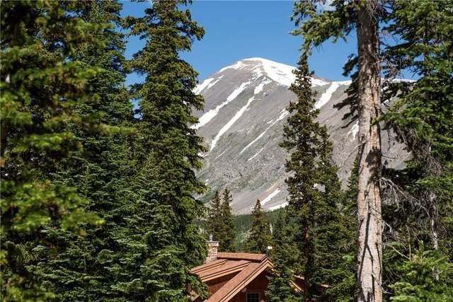 280 Quandary View Drive, Breckenridge, CO 80424 (MLS #S1018800) :: Colorado Real Estate Summit County, LLC