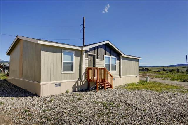 21980 285 Highway #58, Fairplay, CO 80440 (MLS #S1018837) :: Colorado Real Estate Summit County, LLC