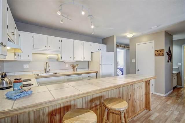 1043 Straight Creek Drive #303, Dillon, CO 80435 (MLS #S1019028) :: Colorado Real Estate Summit County, LLC