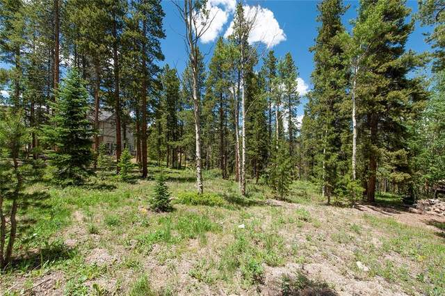 111 Burro Lane, Breckenridge, CO 80424 (MLS #S1019097) :: Dwell Summit Real Estate