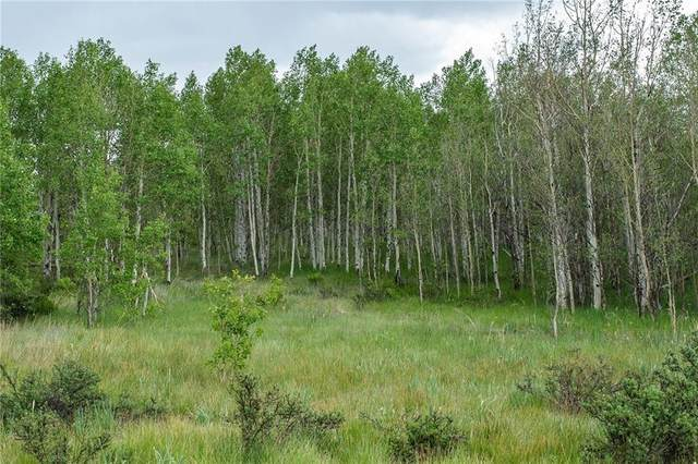 612 Iron Mountain Road, Fairplay, CO 80440 (MLS #S1019145) :: eXp Realty LLC - Resort eXperts