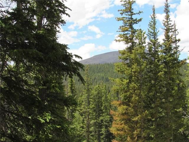 TBD Guymard, Fairplay, CO 80440 (MLS #S1019173) :: Colorado Real Estate Summit County, LLC