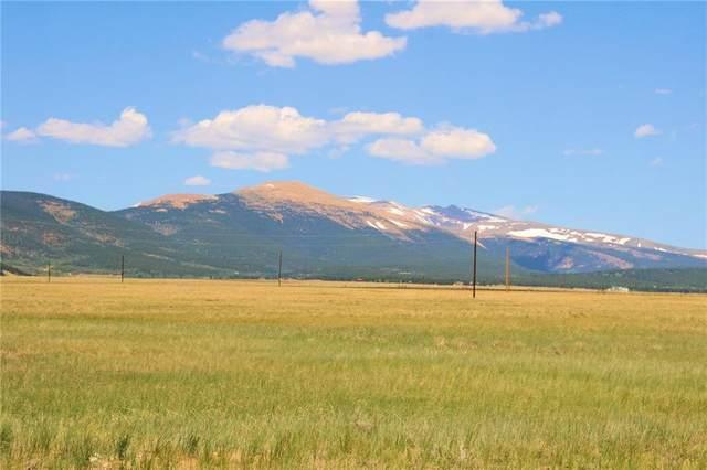 95 W Renegade Lane, Fairplay, CO 80440 (MLS #S1019265) :: Colorado Real Estate Summit County, LLC