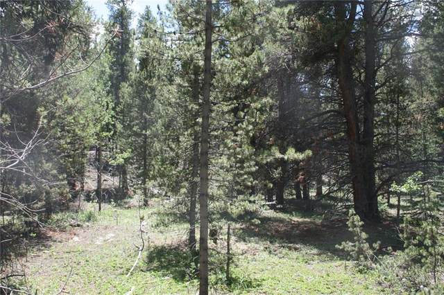 762 Venture Road, Fairplay, CO 80440 (MLS #S1019318) :: Dwell Summit Real Estate