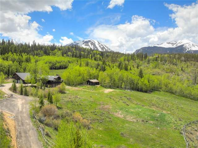 1050 Ruby Road, Silverthorne, CO 80498 (MLS #S1019342) :: Dwell Summit Real Estate