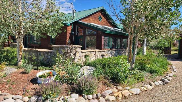 338 County Road 100, Silverthorne, CO 80498 (MLS #S1019383) :: Colorado Real Estate Summit County, LLC