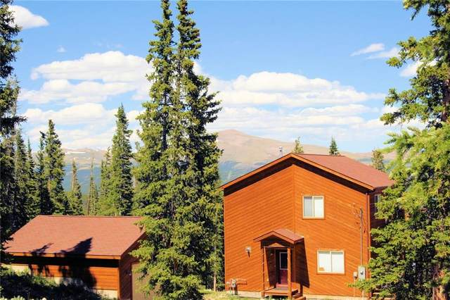 238 Grizzly Drive, Fairplay, CO 80440 (MLS #S1019398) :: Colorado Real Estate Summit County, LLC
