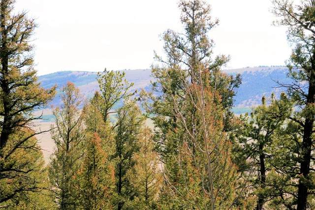 0 Middle Fork Vista, Fairplay, CO 80440 (MLS #S1019404) :: Colorado Real Estate Summit County, LLC