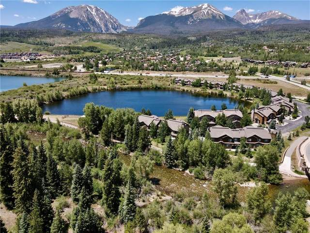 186 Robin Drive #186, Silverthorne, CO 80498 (MLS #S1019411) :: eXp Realty LLC - Resort eXperts