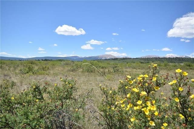 253 Silverheels Road, Fairplay, CO 80440 (MLS #S1019416) :: Colorado Real Estate Summit County, LLC