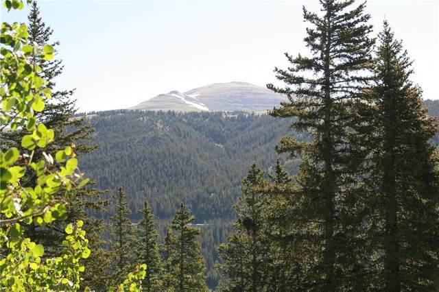 1287 Quartzville Road, Alma, CO 80420 (MLS #S1019440) :: Colorado Real Estate Summit County, LLC