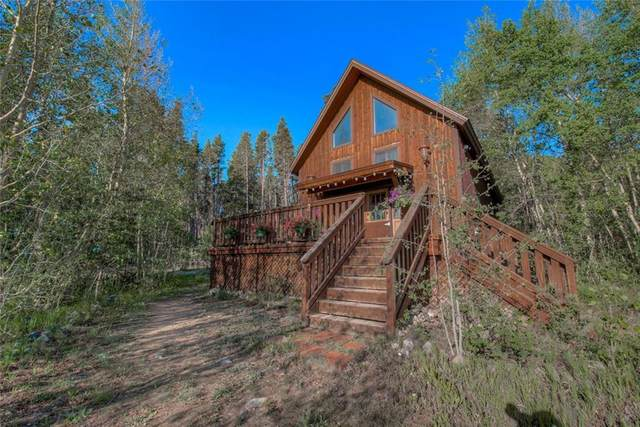 466 Lakeside Drive, Fairplay, CO 80440 (MLS #S1019452) :: Colorado Real Estate Summit County, LLC