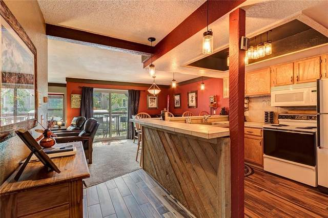 107 N Harris Street #106, Breckenridge, CO 80424 (MLS #S1019556) :: Colorado Real Estate Summit County, LLC