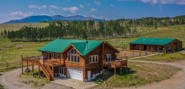 4186 Co Road 5, Fairplay, CO 80440 (MLS #S1019586) :: Colorado Real Estate Summit County, LLC