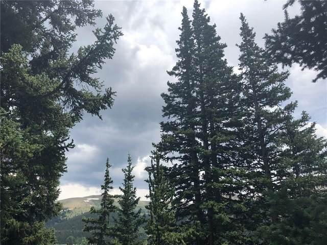 1114 Roberts Road, Alma, CO 80420 (MLS #S1019631) :: Colorado Real Estate Summit County, LLC