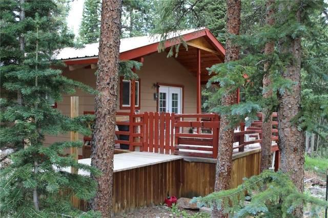 456 Peterson Drive, Alma, CO 80420 (MLS #S1019638) :: eXp Realty LLC - Resort eXperts