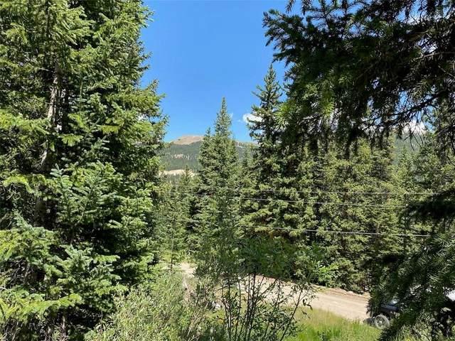 485 Peterson Drive, Alma, CO 80420 (MLS #S1019646) :: Colorado Real Estate Summit County, LLC