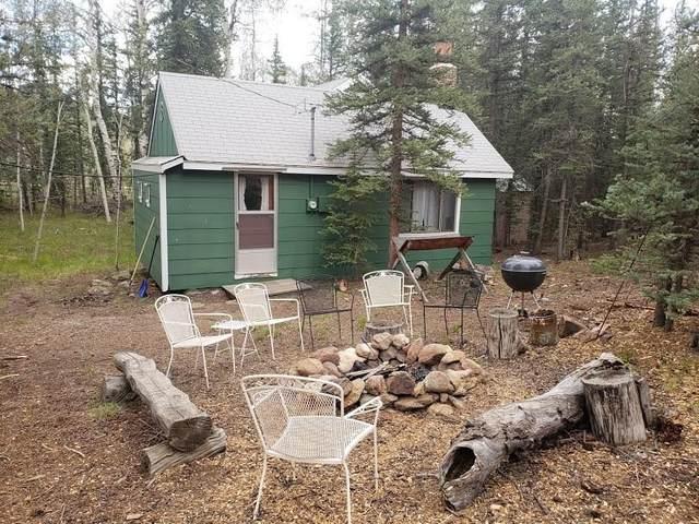 5205 Arrowhead Drive, Como, CO 80432 (MLS #S1019681) :: eXp Realty LLC - Resort eXperts