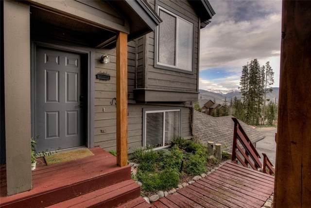 113 Spyglass Lane #113, Silverthorne, CO 80498 (MLS #S1019707) :: Colorado Real Estate Summit County, LLC