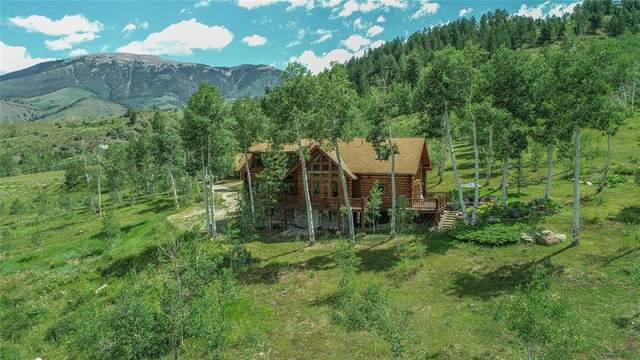 743 Rodeo Drive, Silverthorne, CO 80498 (MLS #S1019741) :: eXp Realty LLC - Resort eXperts