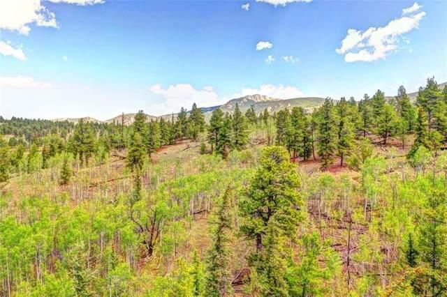 168 Wills Way, Jefferson, CO 80456 (MLS #S1020804) :: Colorado Real Estate Summit County, LLC