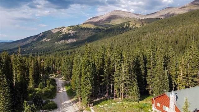 0294 Cr 672, Breckenridge, CO 80424 (MLS #S1020834) :: Colorado Real Estate Summit County, LLC