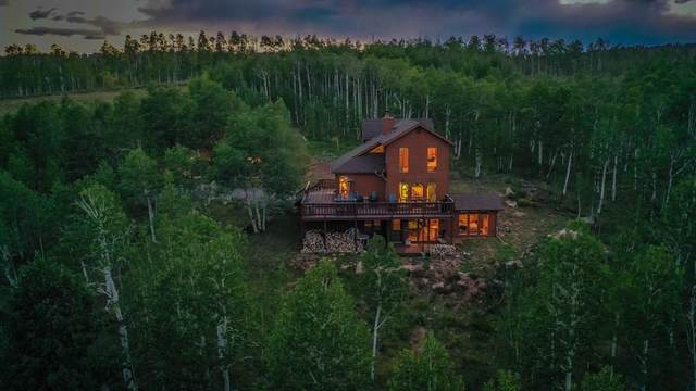 324 Iron Mountain Road, Fairplay, CO 80440 (MLS #S1020965) :: eXp Realty LLC - Resort eXperts