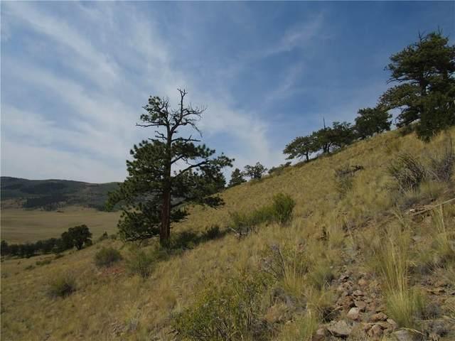 865 Elkhorn View Drive, Como, CO 80432 (MLS #S1020981) :: eXp Realty LLC - Resort eXperts