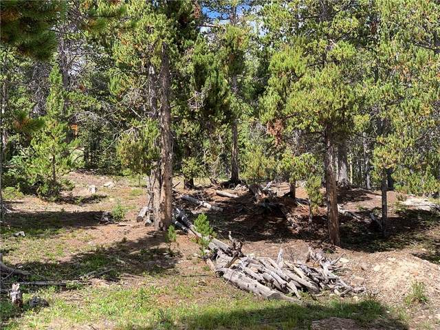 95 Trails End, Fairplay, CO 80440 (MLS #S1020990) :: eXp Realty LLC - Resort eXperts