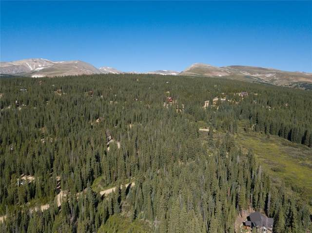 630 Puma Place, Fairplay, CO 80440 (MLS #S1021000) :: Dwell Summit Real Estate