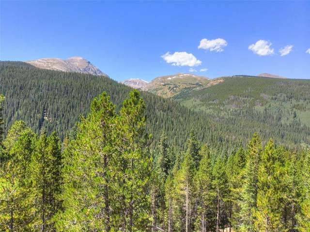 347 Cr 628, Breckenridge, CO 80424 (MLS #S1021027) :: Colorado Real Estate Summit County, LLC
