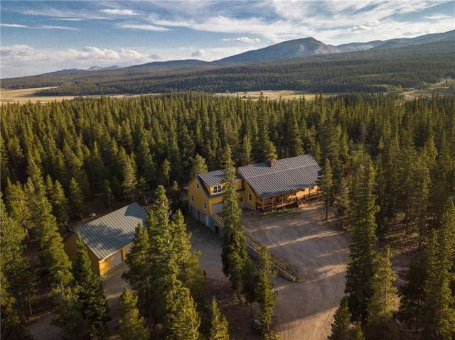 425 Potentilla Road, Fairplay, CO 80440 (MLS #S1021062) :: Dwell Summit Real Estate