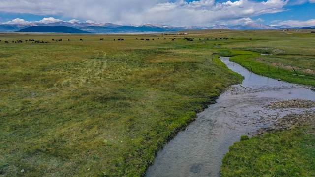 28,29,30 Fourmile Creek Road, Hartsel, CO 80449 (MLS #S1021070) :: Dwell Summit Real Estate